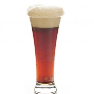 Beer Glass -903 (Unbreakable)- Set of 2