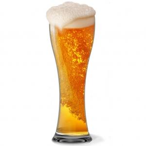 Beer Glass -904 (Unbreakable)- Set of 6