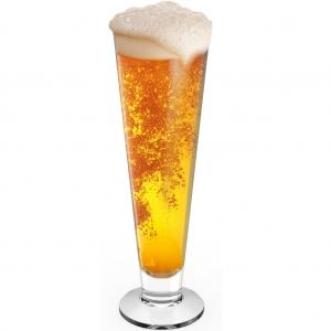 Beer Glass -901 (Unbreakable)- Set of 2